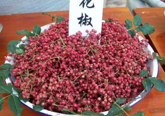 花椒芥末生姜食醋 这9种调料竟是长寿高手