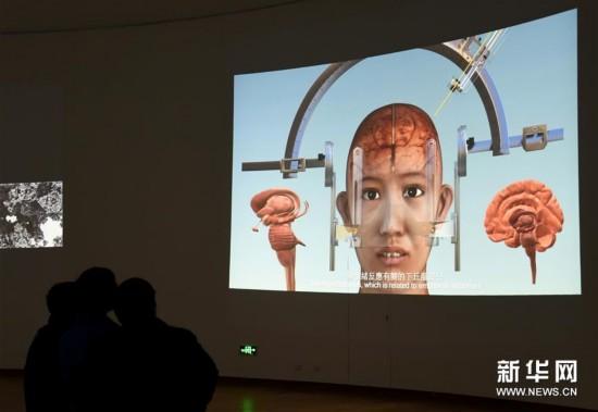 中国美院举办首届跨媒体艺术节(图)