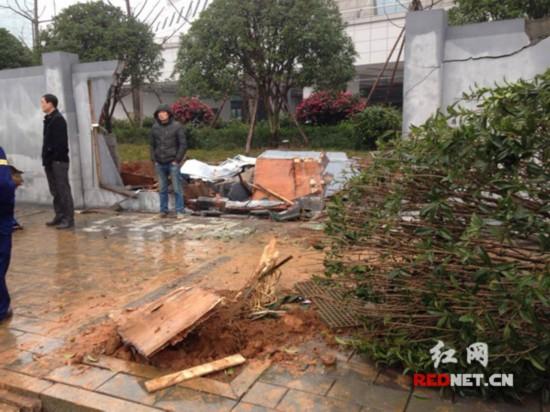 被撞坏的树和围墙。