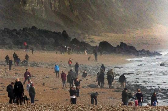 """英国海岸悬崖崩塌 掀起""""淘化石热"""""""