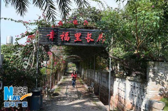 12月16日,坐落在广西玉林市北流新圩镇的玉林市园艺场幸福里生态