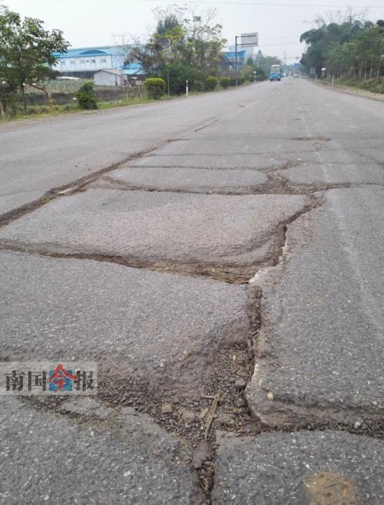 路面出现龟裂纹