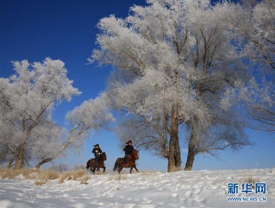 #(生态)(1)新疆阿勒泰出现雾凇美景