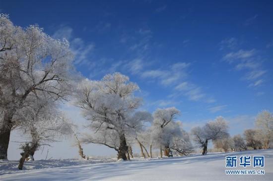 #(生态)(2)新疆阿勒泰出现雾凇美景