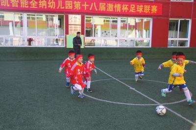 中国首部幼儿足球教材《幼儿关键期足球》出版