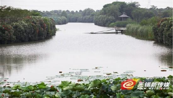 别墅月城湖公园省级成江阴首个湿地公园芙蓉a别墅湿地v别墅图片