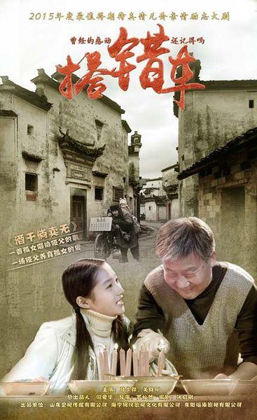 2016新版《搭错车》1-40集电视剧全集分集剧情介绍大结局