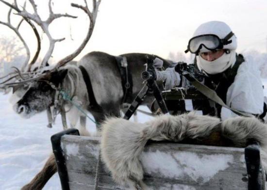鹿与狗助阵!俄军在北极全副武装坐雪橇