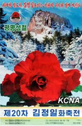 朝鲜第20届金正日花节宣传画问世庆祝光明星节(图)