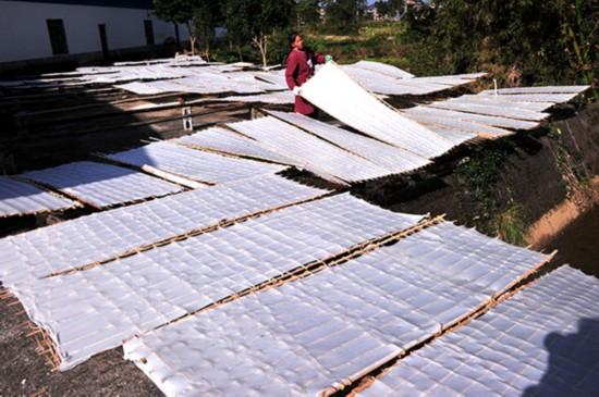 广西罗城:小作坊做成大产业