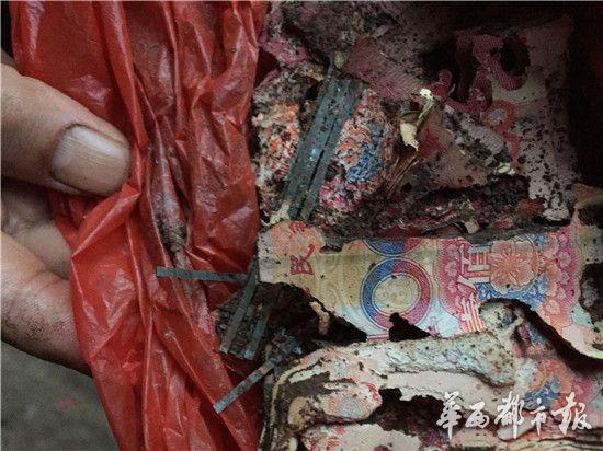 四川老人两万现金埋地下 被白蚁啃成钱渣渣