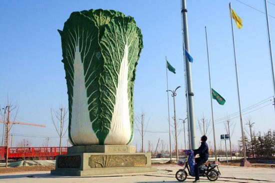 """山东聊城现巨型""""大白菜""""雕塑"""