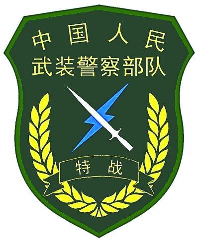 武警部队统一更换新式标志服饰 包括胸标 臂章等图片