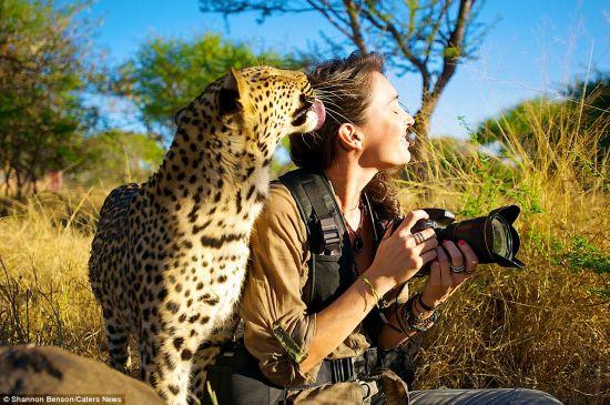 美女與野獸:拍攝野生動物 身上傷疤無數