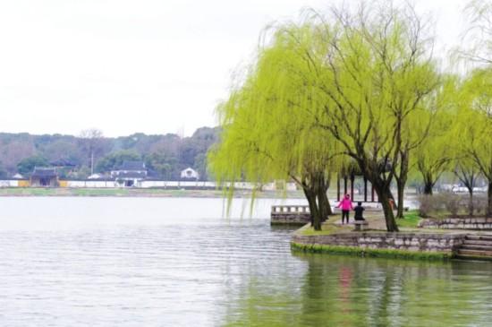 苏州有多少条河 生产生活一年用水85亿立方米
