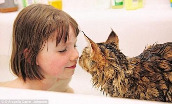 暖心:自闭症小萝莉在猫咪陪伴下成为画家