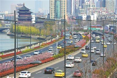 南京城西干道海棠花绽放 成秦淮河畔靓丽风景