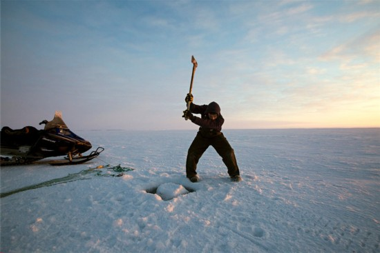 阿拉斯加冰川消融 居民失去家园举步维艰
