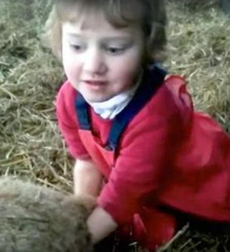 3岁萝莉给羊接生