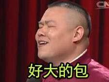 小岳夺冠小岳岳助阵我的天呐岳云鹏表情被一个表情动画我杀你爸图片