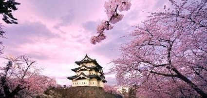 中国人赴日或免签 揭去日本旅游需要换多少日元(组图)