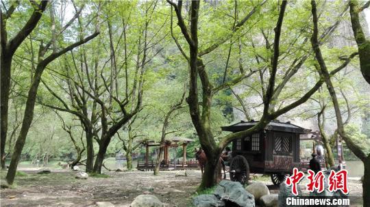 电视剧《大军师司马懿》在浙江仙都热拍。 詹坚宇 摄