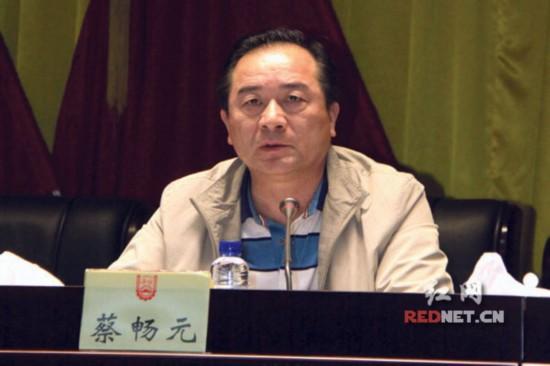 湖南省人社厅副厅长、党组副书记蔡畅元主持。