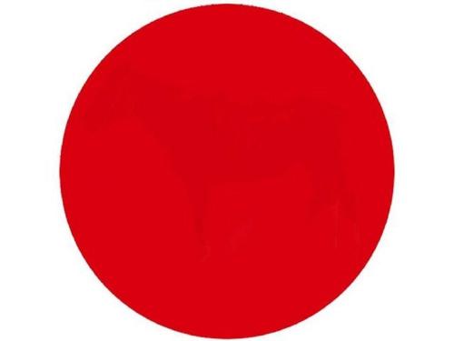 红色圆圈内出现动物幻象你的余光敏感吗?(图)