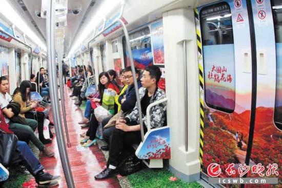 昨日,大围山杜鹃花地铁专列正式开通。长沙晚报记者 周斌摄