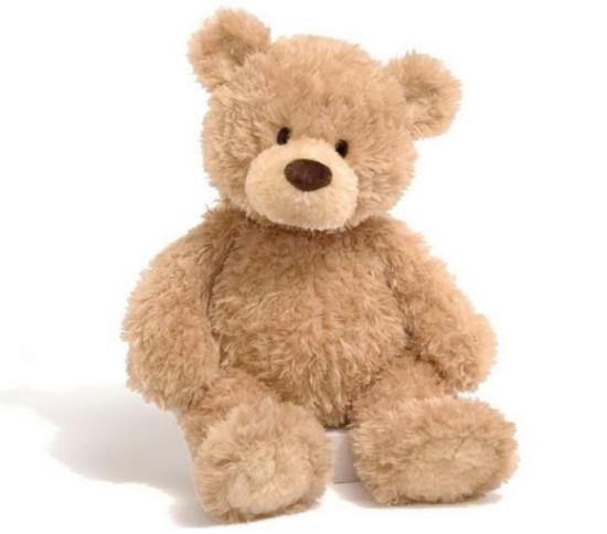 """你知道泰迪熊为何被叫做""""泰迪""""熊吗?这故事还蛮血腥的"""