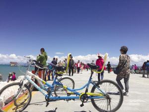 青海湖唤你来骑行环游兜风