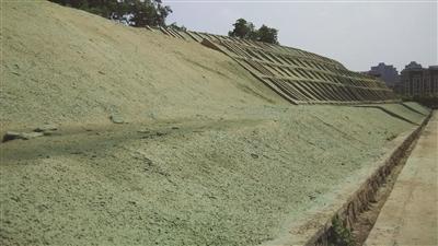 景区山坡喷涂假绿地?高科技种草防水土流失