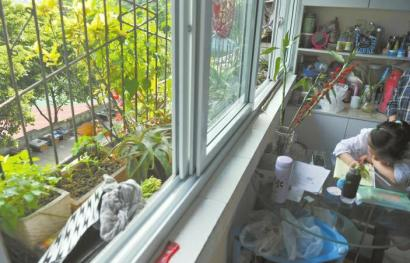 """小区暗藏17箱蜜蜂 """"斗蜂""""三年伤了邻里和气"""