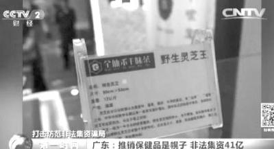 """东莞破获""""千木灵芝""""非法集资案9万人被骗"""
