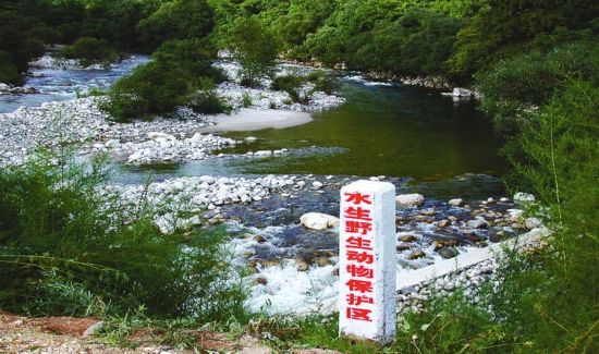 级自然保护区名单,陕西的丹凤武关河珍稀水生动物国家级自然保护区,黑