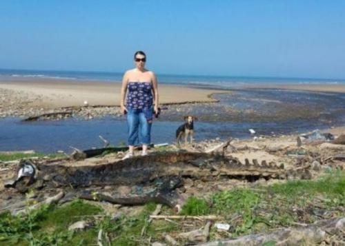 海怪出沒?英國海灘現巨型動物神秘尸體身長3米