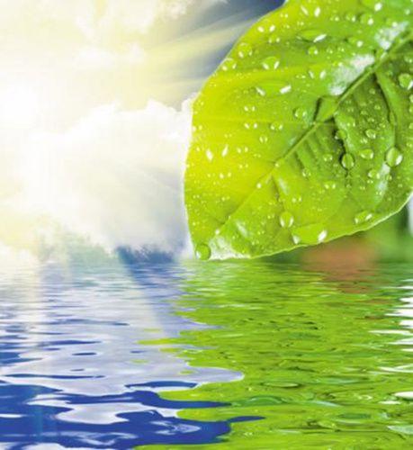清热去湿是小满时节的养生重点 。图片来源:羊城晚报