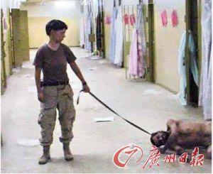揭秘中情局十三种酷刑
