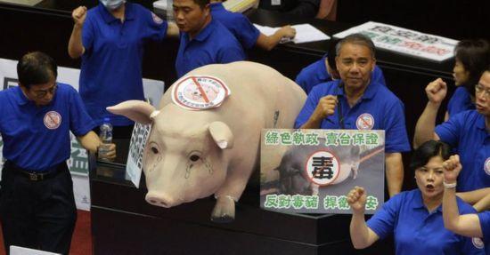 """猪农扛猪进""""立法院""""抗议 道具猪逼真或全台巡演"""