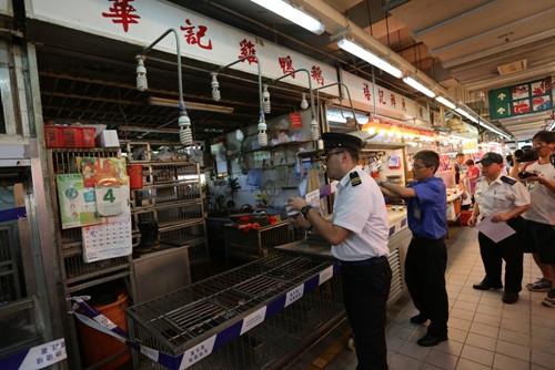 香港再爆禽流感今评估风险研议是否杀鸡(图)