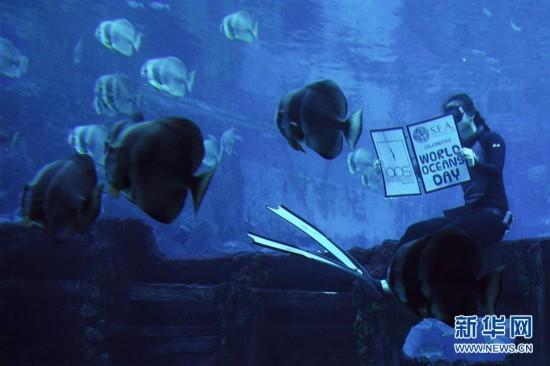 新加坡聖淘沙名勝世界S.E.A.海洋館慶祝世界海洋日