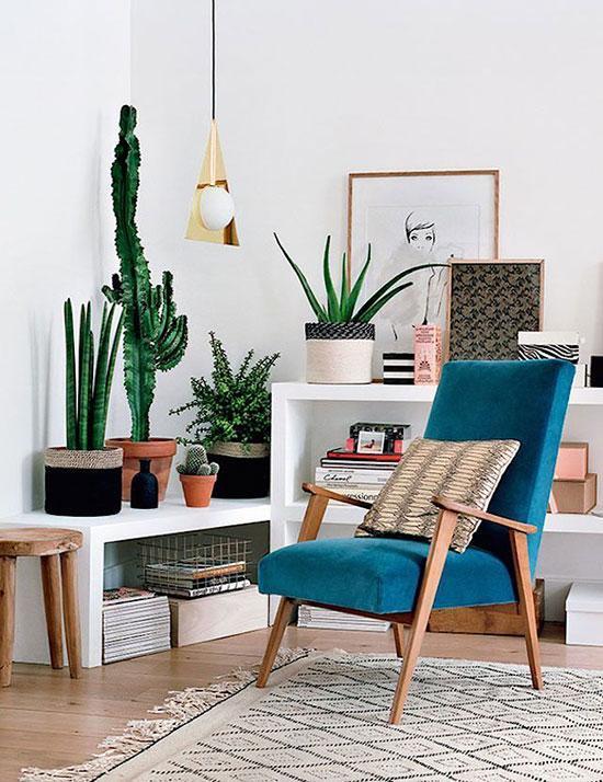 小编的话: 北欧风格的家居强调自然氛围,绿色植物是不可缺少的非常