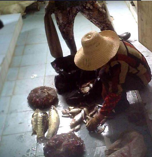 武汉公厕内加工死龙虾 为掩人耳目藏匿到公共厕所内(图)