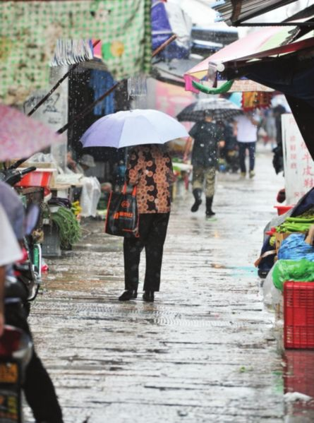 昨天的大雨让葑门横街上买菜的市民少了很多。 □记者 徐志强 摄