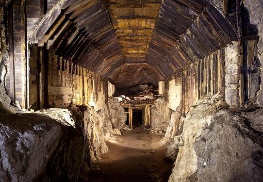 波兰7月挖掘纳粹黄金列车:全长150米 寻宝者已确定藏宝地