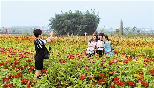 南宁:全域旅游游出精彩