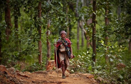 最后的狩猎人:探访尼泊尔原始部落