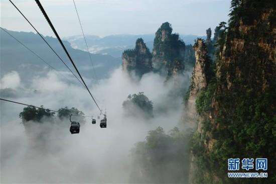 张家界武陵源天子山索道缆车在群峰和云雾间穿梭