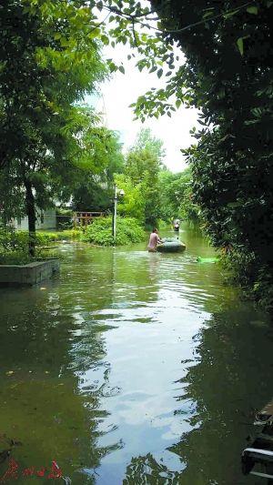 遭特大暴雨突袭南京多处内涝 武汉大部分城区已排除积水