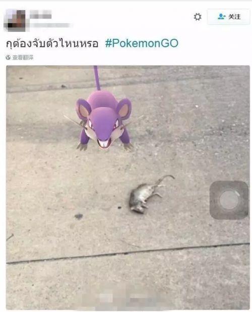都是Pokemon Go惹的祸!澳洲警察局被人日闯十八回